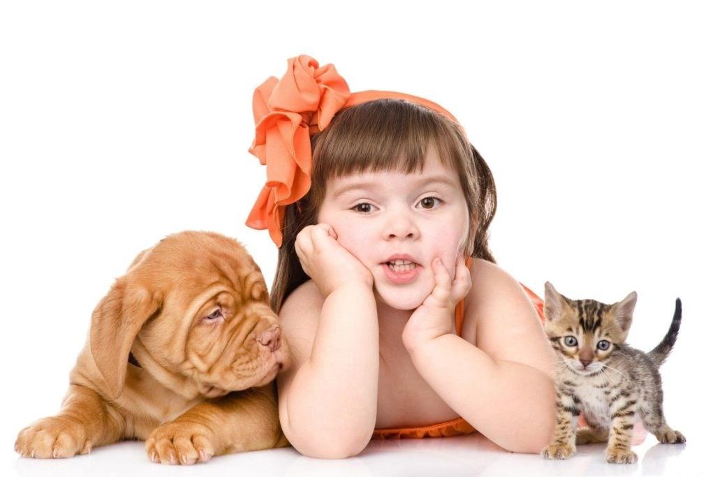 Рисунки стихи, картинки кошка и собака для детей
