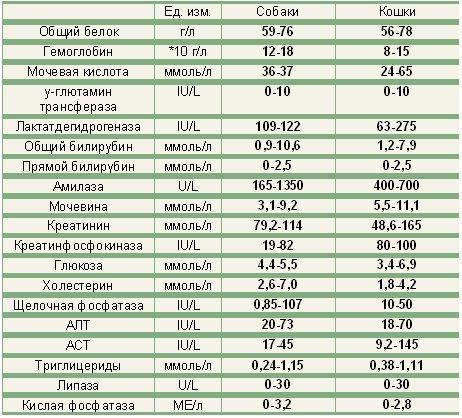 Гематологическое исследование крови (ГИКр)